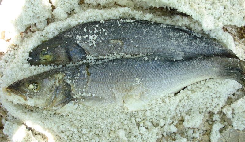 Recette du Bar en croûte de sel de l'île de Ré